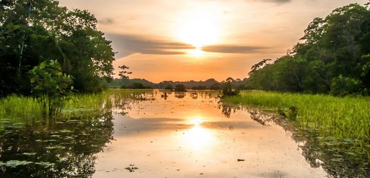 Amazonas-Peru-1170x500px