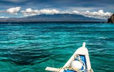 Apo-island-Philippines-1170x500px-2
