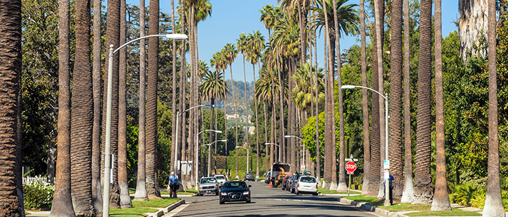 Beverly-hills-725x310px