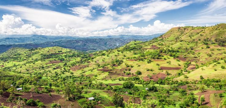 Bonga-Forest-ethiopia-1170x500px-3