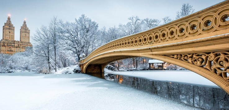 Bow-Bridge-in-Central-Park,-New-york-1170x500px-2