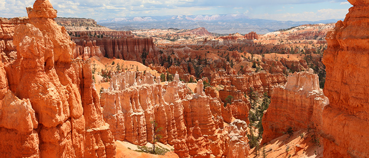 Bryce-Canyon-National-Park-2-725x310px