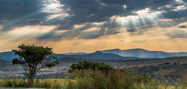 Cape-Town-nature-1170x500px-3