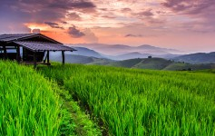 Chiangmai-Thailand-Asien-1-1170x500px