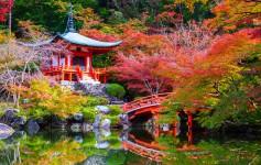 Daigoji-Temple-in-Autumn,-Kyoto,-Japan-1170x500px-2