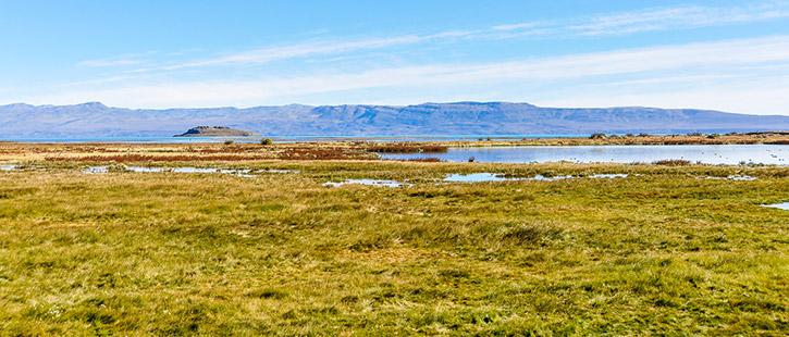 El-Calafate,-Patagonia,-Argentina-725x310px