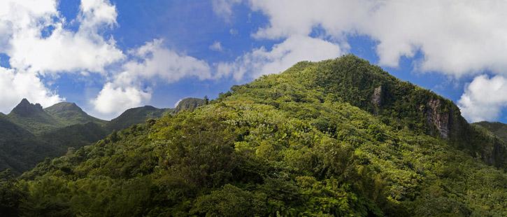 El-Yunque-Puerto-Rico-725x310px