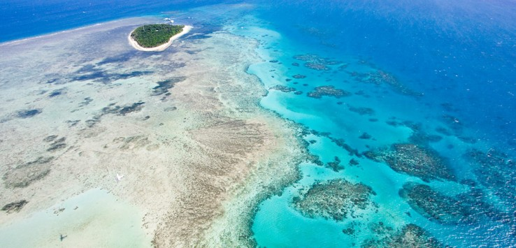 Great-Barrier-Reef-natur korallen tauchen urlaub