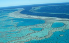 Great-Barrier-Reef-5-725x310px