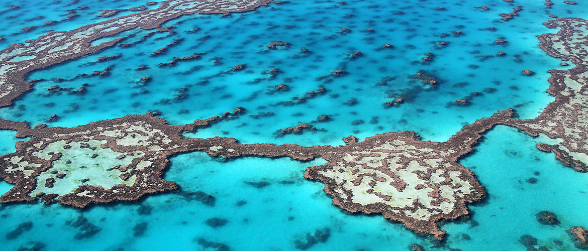 Great-Barrier-Reef-6-1170x500px