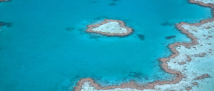 Great-Barrier-Reef-7-725x310px