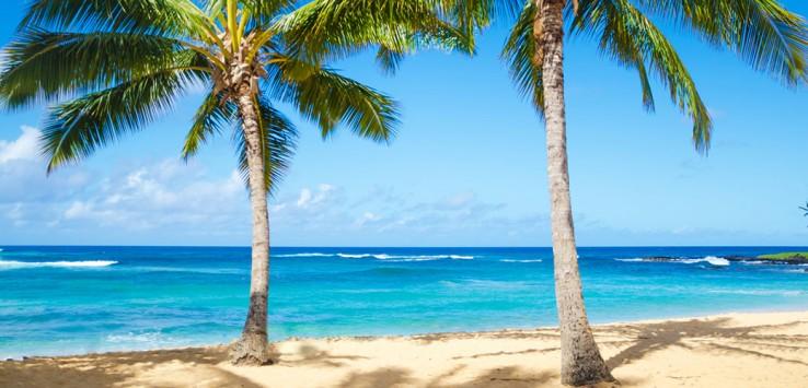 Hawaii-Karibik-Urlaub-Meer-Strand-10-1170x500px