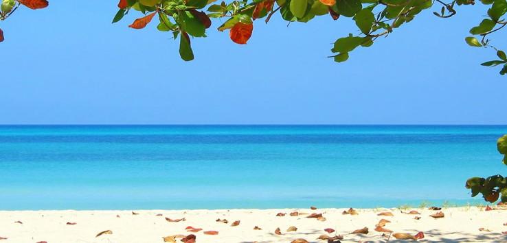 Jamaika-Natur-Karibik-3-1170x500px