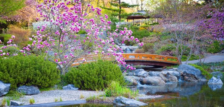 Japan-Garten-Natur-Asien-1-1170x500px