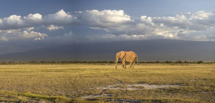 Kenia-1-1170x500px