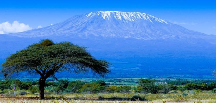 Kilimanjaro-Afrika-Natur-7-1170x500px