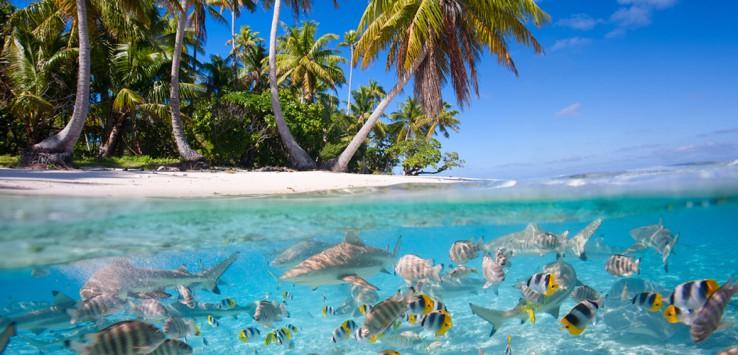 Maldives-1170x500px-5