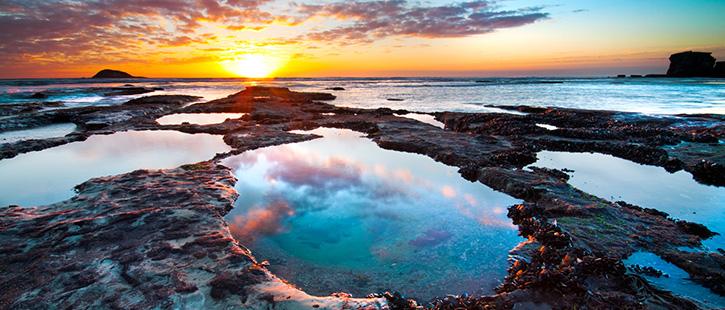 Maori-Bay-725x310px