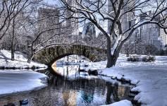 New-York-Central-Park-16-1170x500px