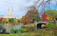 New-York-City-Central-Park-Autumn-1170x500px-2