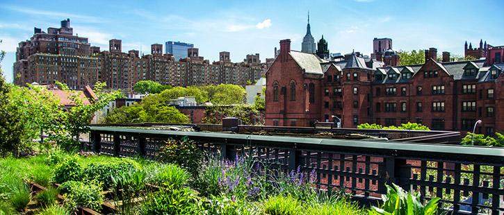 New-York-Highline-Park-725x310px