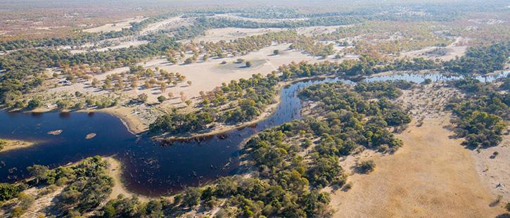 Okavango-725x310px