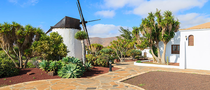 Old-windmill-in-tropical-garden-in-Antigua-village,-Fuerteventura,-Canary-Islands,-Spain-725x310px