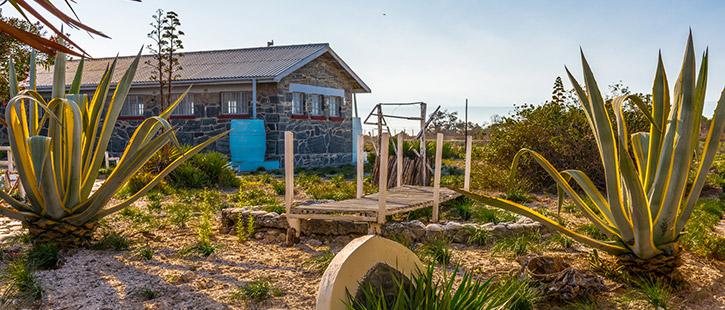 Robben-Island-725x310px