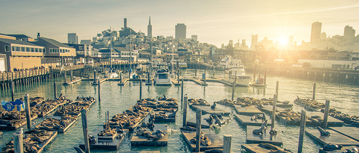 San Francisco Pier39-725x310px