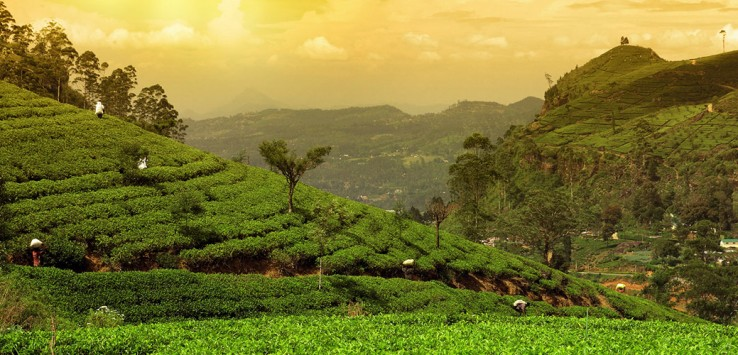 Sri-Lanka-3-1170x500px