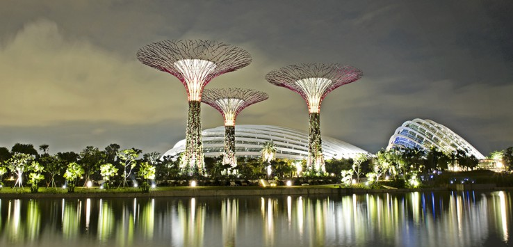 The-Supertree-Grove-Singapore-1170x500px-3