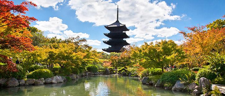 Toji-pagoda-725x310px