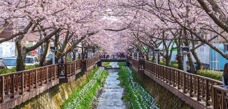Yeojwacheon-Stream-South-Korea-1170x500px-2