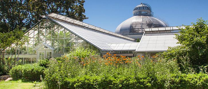allan-gardens--725x310px