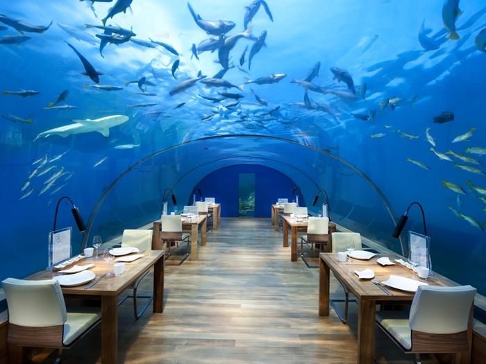 maldivesc