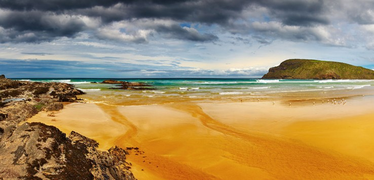 new-zealand-neuseeland natur strand urlaub