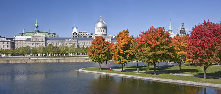 old-montreal-725x310px