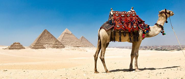 pyramids-of-Giza-in-Cairo,-Egypt.-725x310px